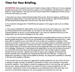 Time4Writing Reviews: Briefing