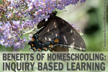 TheHomeSchoolMom - Benefits of Homeschooling: Inquiry Based Learning