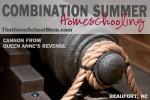 Combination Summer Homeschooling