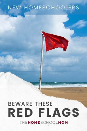 Red flag on a beach with text New homeschoolers beware these red flags