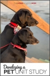 Two black dogs looking out at the water from a dock with text Developing a Pet Unit Study