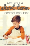 TheHomeSchoolMom Blog: Short-term Homeschooling