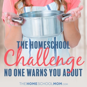 The Homeschool Challenge No One Tells You About