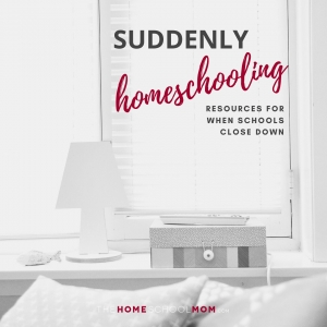 Image of sofa with pillows and a lamp on a table with text Suddenly Homeschooling: Resources for when schools close down - TheHomeSchoolMom.com