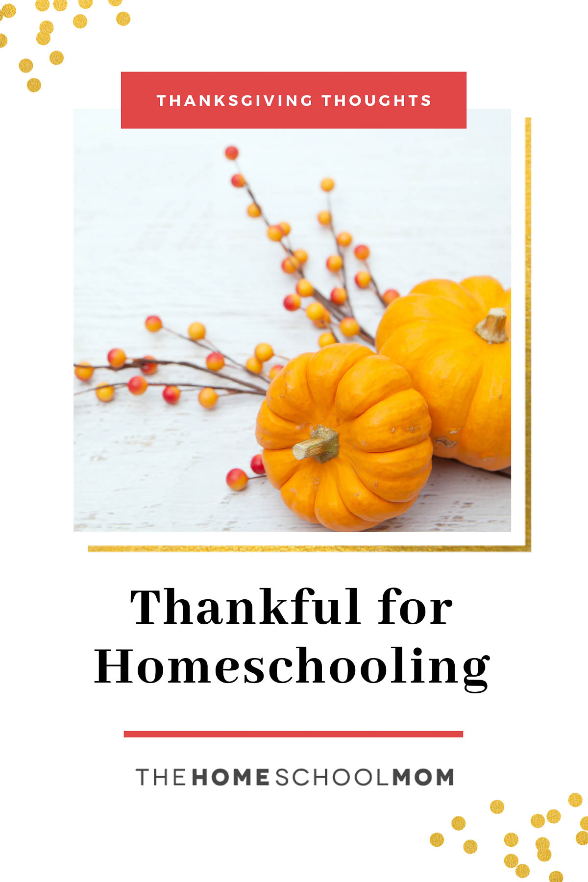 Homeschooling Thoughts: Thankful for Homeschooling - thehomeschoolmom
