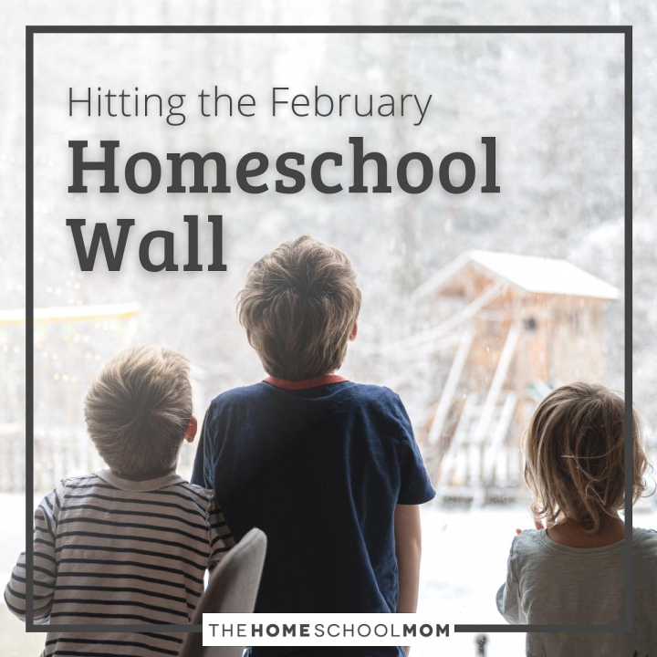 Hitting the February Homeschool Wall