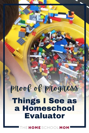 proof of progress: things I see as a homeschool evaluator