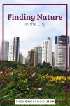 Finding Nature in the City