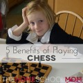 TheHomeSchoolMom Blog: 5 Benefits of Playing Chess