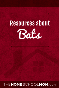 Resources for studying about bats