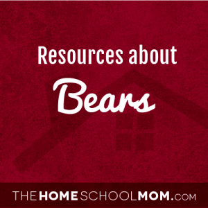Resources for studying about bears