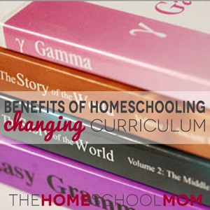 Benefits of Homeschooling: Flexibility When a Curriculum Doesn't Work