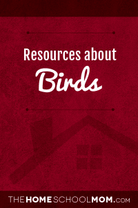 Resources for studying about birds