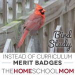 Instead of Curriculum: Unit Studies withBSA Merit Badges