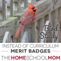 BSA Merit Badges {Free Unit Studies}