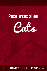 Cats Resources