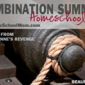 TheHomeSchoolMom: Combination Summer Homeschooling