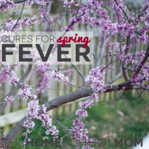 TheHomeSchoolMom: Cures for Spring Fever