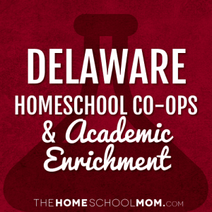 Delaware Homeschool Co-ops and Academic Enrichment