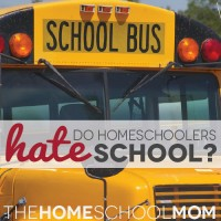 Do Homeschoolers Hate Public Schools?