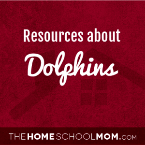 Resources about dolphins