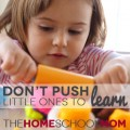 TheHomeSchoolMom: Don't Push Little Ones To Learn