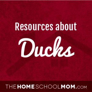 Resources about ducks