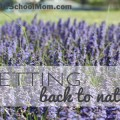 TheHomeSchoolMom: Getting Back to Nature