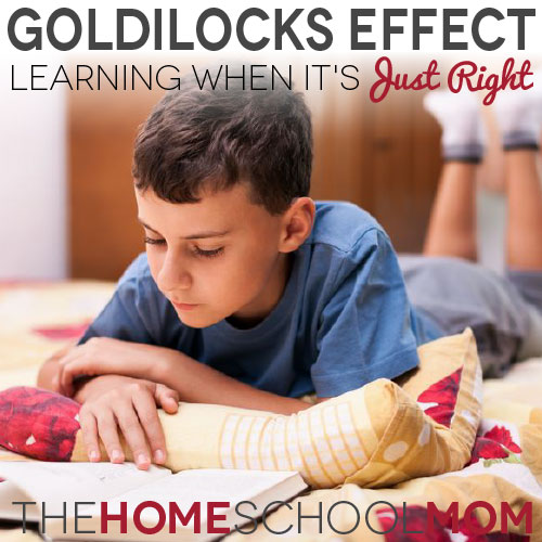 "TheHomeSchoolMom Blog: Learning when it's ""just right"""