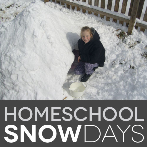 Do homeschoolers get snow days?