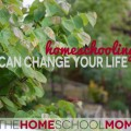 TheHomeSchoolMom: Homeschooling Can Change Your Life