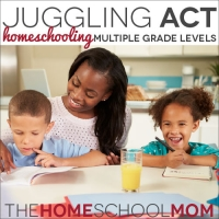 Juggling Act: Homeschooling Multiple Grade Levels