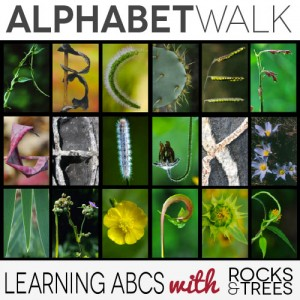Learning ABCs with rocks and trees