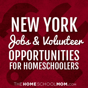 New York Jobs & Volunteer Opportunities for Homeschoolers