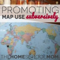 Promote Map Use by Kids the Subversive Way