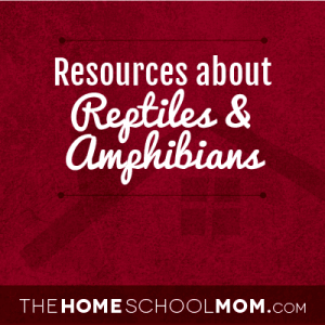 Learn about Reptiles & Amphibians