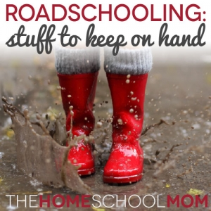 Roadschooling: My list of 'extras' to keep in the car