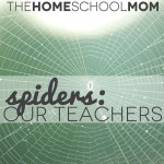 TheHomeSchoolMom: Spiders are our teachers