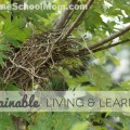 TheHomeSchoolMom: Sustainable Living and Learning