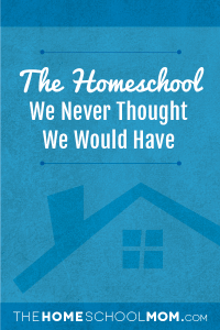 the-homeschool-we-never-thought-we-would-have