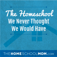 The Homeschool We Never Thought We'd Have…A Year Later