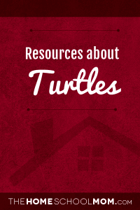 Homeschool resources about turtles