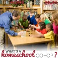 TheHomeSchoolMom Blog: What is a homeschool co-op?
