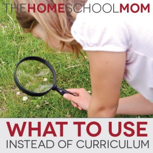 TheHomeSchoolMom: What To Use Instead of Curriculum