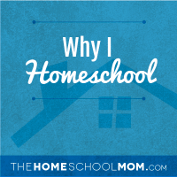Here's to the New Year: Why I Homeschool, Part 2